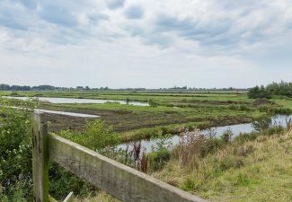 Natuurontwikkeling in de polder Oukoop bij Reeuwijk