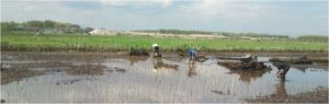 ruimtelijke plannen risicomanagement biodiversiteit financieel adviseur beleidsplanbezuinigen