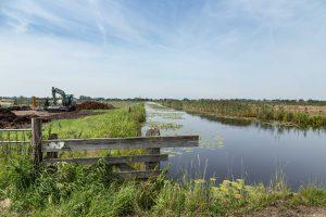 Natuurontwikkeling in de polder Demmerik