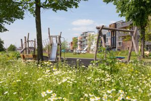 Technische uitwerking Papaverpark Amsterdam speelplek • Advies grondwerk, kruidenmengsels en beplantingen