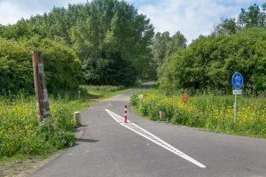 Voorbereiding van de aanleg van fietspaden in het Diemerbos nav aanleg A9